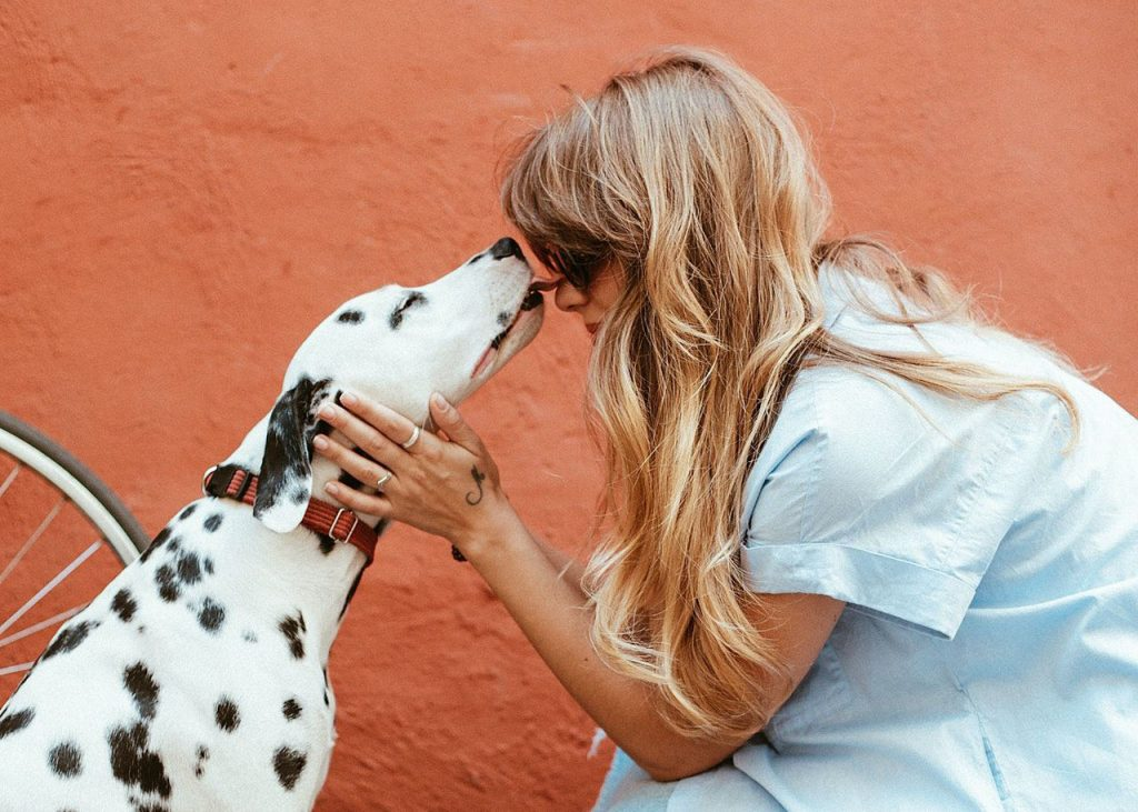 Why Do Dogs Lick You? Is It Love?