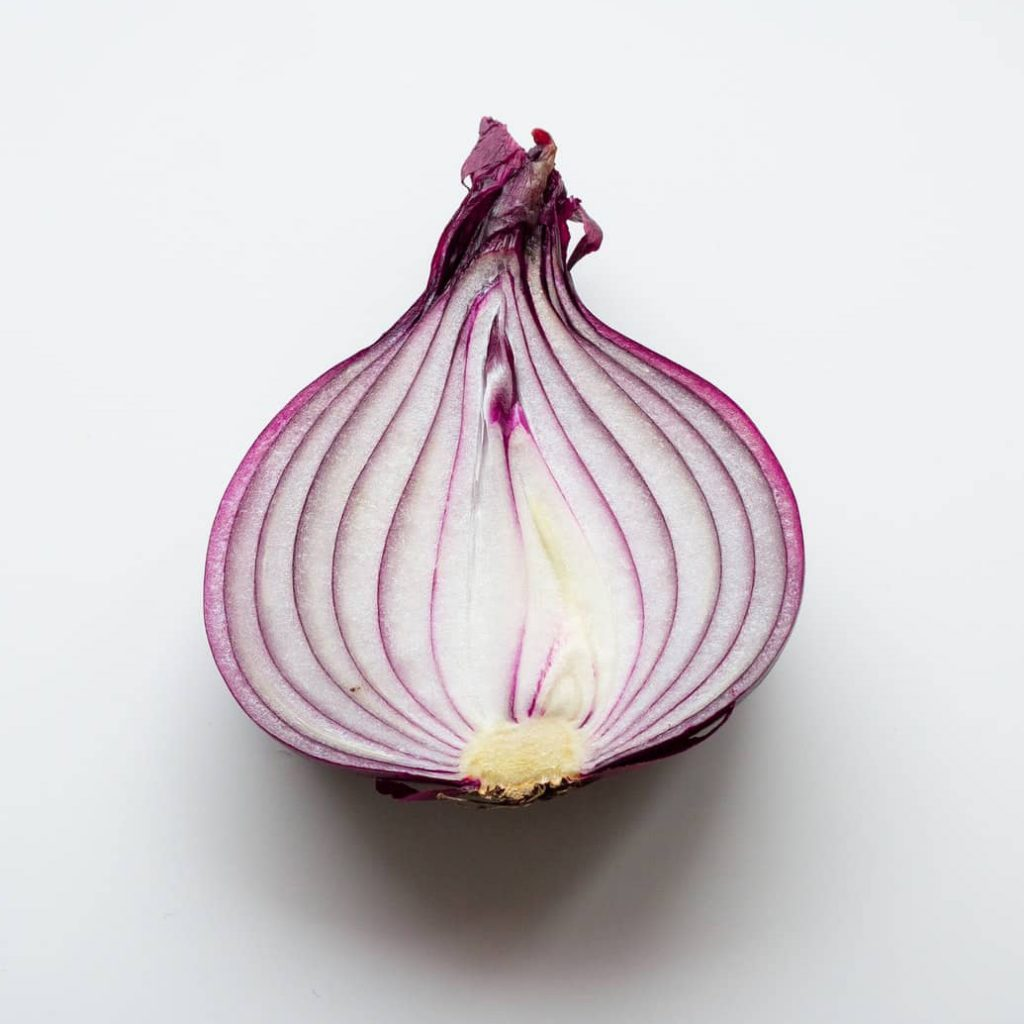 Can Dogs Eat Onion