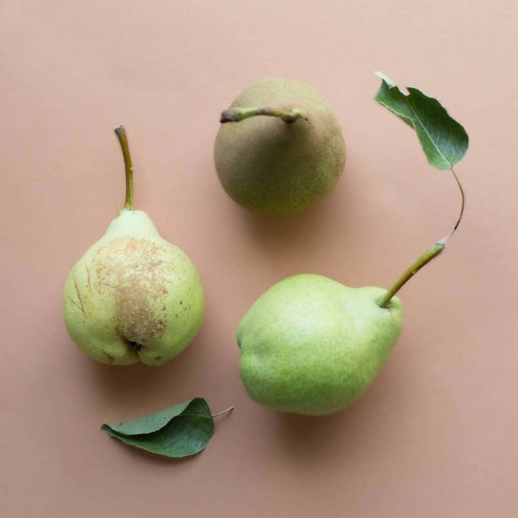 can dogs eat pear