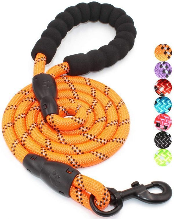 BAAPET Strong Reflective Dog Leash with Padded Handle
