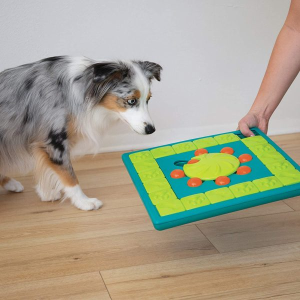 Multipuzzle Interactive Puzzle Toy