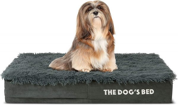 The Dogs Bed Orthopedic Dog Bed