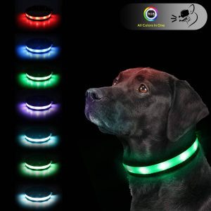 Rechargeable LED Safety Dog Collar