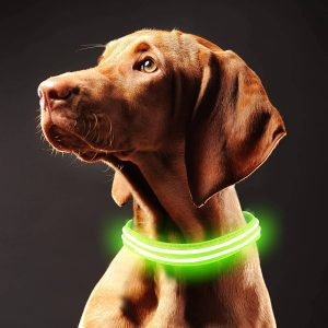 IFOAIR Waterproof Led Collar for Dogs