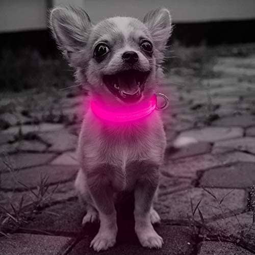 Domi Rechargeable Led Dog Light Collar