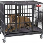 ProSelect Empire Indestructible Heavy Duty Crate